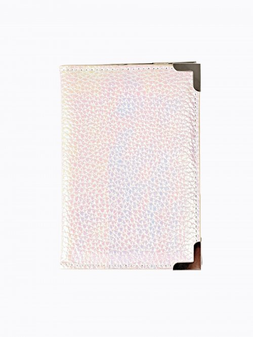 METALLIC PASSPORT CASE