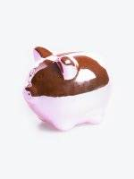 Small pig money box